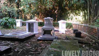 Bogor Botanical Gardens