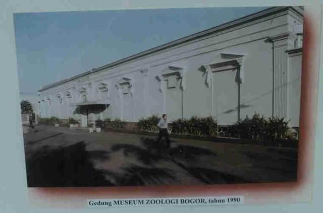 Museum Zoologi Bogor - Foto zaman dahulu 3