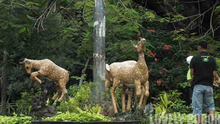 Patung Kijang , Sang Fauna Identitas Kota Bogor