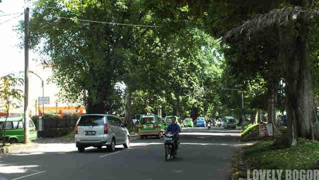 Jalan Sumeru – Sisa Kerindangan Kota Hujan