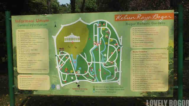 Kebun Raya Bogor – Spot/Tempat Mana Yang Menarik?