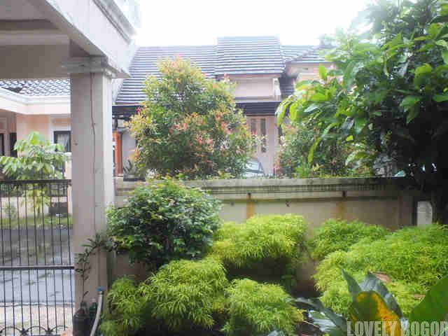 Mencegah Banjir Dengan Menjaga Taman Rumah Anda