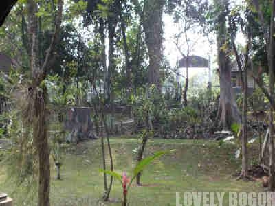 Orchidarium Kebun Raya Bogor