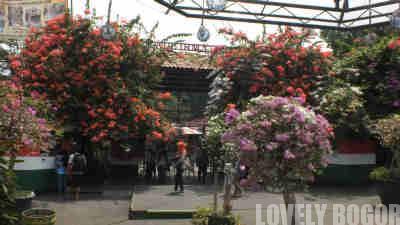 Taman Ade Irma Suryani – Ceria !