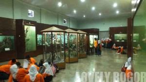 Museum Zoologi Bogor51
