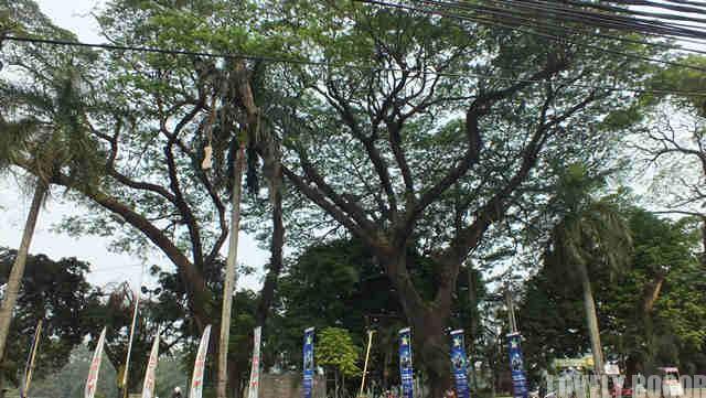 Berjalan Kaki di Jalan Sudirman Bogor