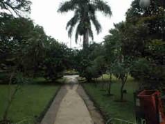 Tempat Jogging di Kota Bogor