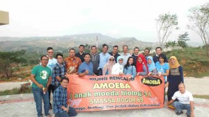 amoeba260