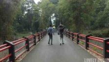 Jembatan Surya Lembayung Di Kebun Raya