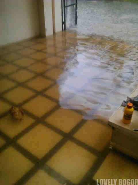 Bogor Banjir Lho! Jangan Salah!