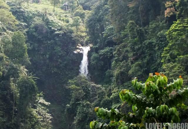The beautiful Cigamea Waterfall Bogor