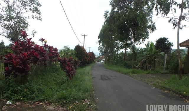 Curug Cigamea Kabupaten Bogor