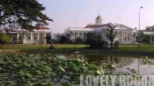 Teratai Dan Istana Bogor