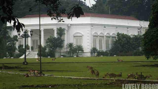 Istana Bogor dan Rusa Totol