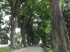 Jalan Rumah Sakit Bogor