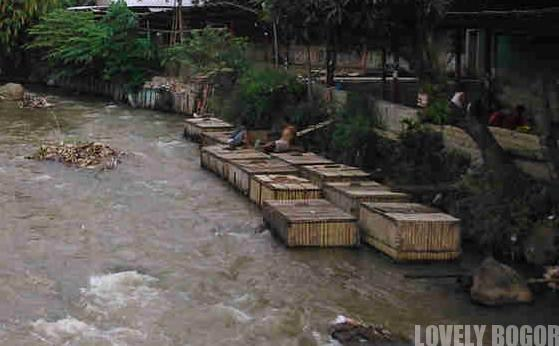 Keramba Di Sungai Cipakancilan