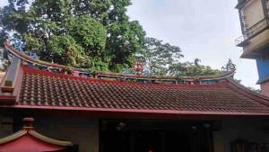 The Dragons in Bogor
