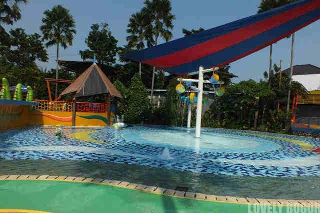 Touch Pool Di The Jungle Water Adventure Bogor