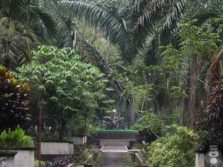 Kebun Wisata Ilmiah : Kebun Raya Mini Yang Tersembunyi