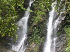 10 Tips Berwisata Ke Bogor Untuk Mendapatkan Wisata Maksimal