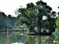 The Gede Lake