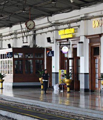 Membersihkan Daun Tanaman Hias di Stasiun Bogor