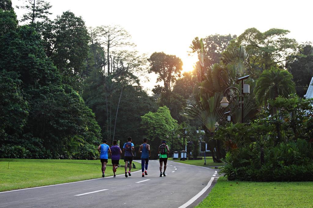 Jogging Di Kebun Raya Bogor