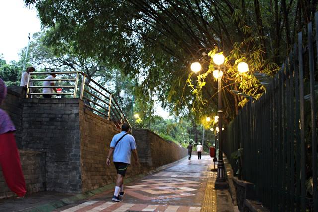 mengapa trotoar seputar kebun raya bogor seperti menjadi tempat wisata 2