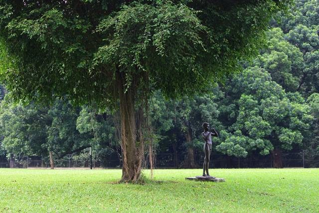 a piper statue in Bogor Palace Backyard