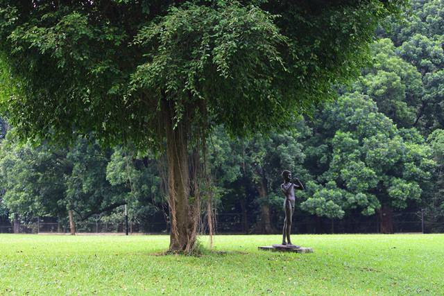 a piper statue in Bogor Palace Backyard