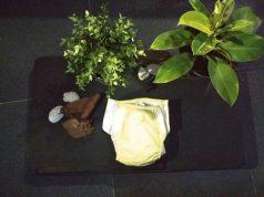 POPOK 2 IN 1 (FROM POPOK TO PUPUK) : INOVASI POPOK EKONOMIS YANG RAMAH LINGKUNGAN DAN AMAN BAGI BAYI