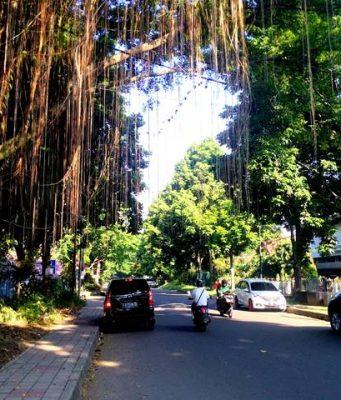 Jalan Merak Bogor c