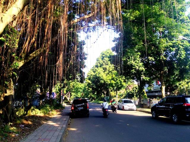 Jalan Merak : Kawasan Elit Bogor Sejak Dulu