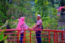 Lokasi Pemotretan Foto Pre-Wedding Terbaik di Kota Bogor