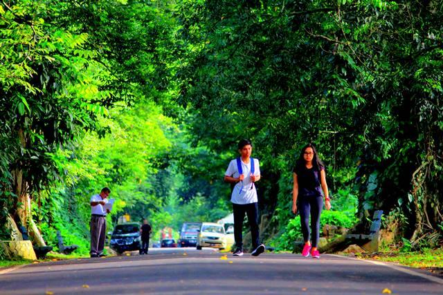lokasi pemotretan foto prewedding terbaik di Bogor 5