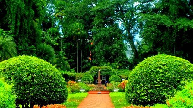 5 spot foto terbaik di kebun raya bogor 2 - Taman Teijsman a