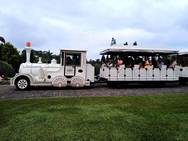 Cara Menuju Taman Bunga Nusantara Cianjur