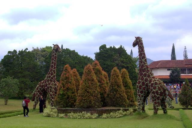 Patung Jerapah di Taman Bunga Nusantara D