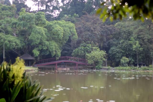 Kapan Jam Buka Kebun Raya Bogor? Bisakah Masuk Lebih Awal?