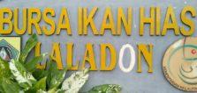 Bursa Ikan Hias Laladon – Anda Butuh Akuarium ?