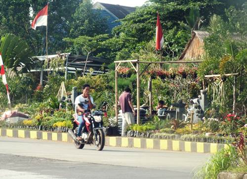New Normal, Warga Bogor Berburu Tanaman H